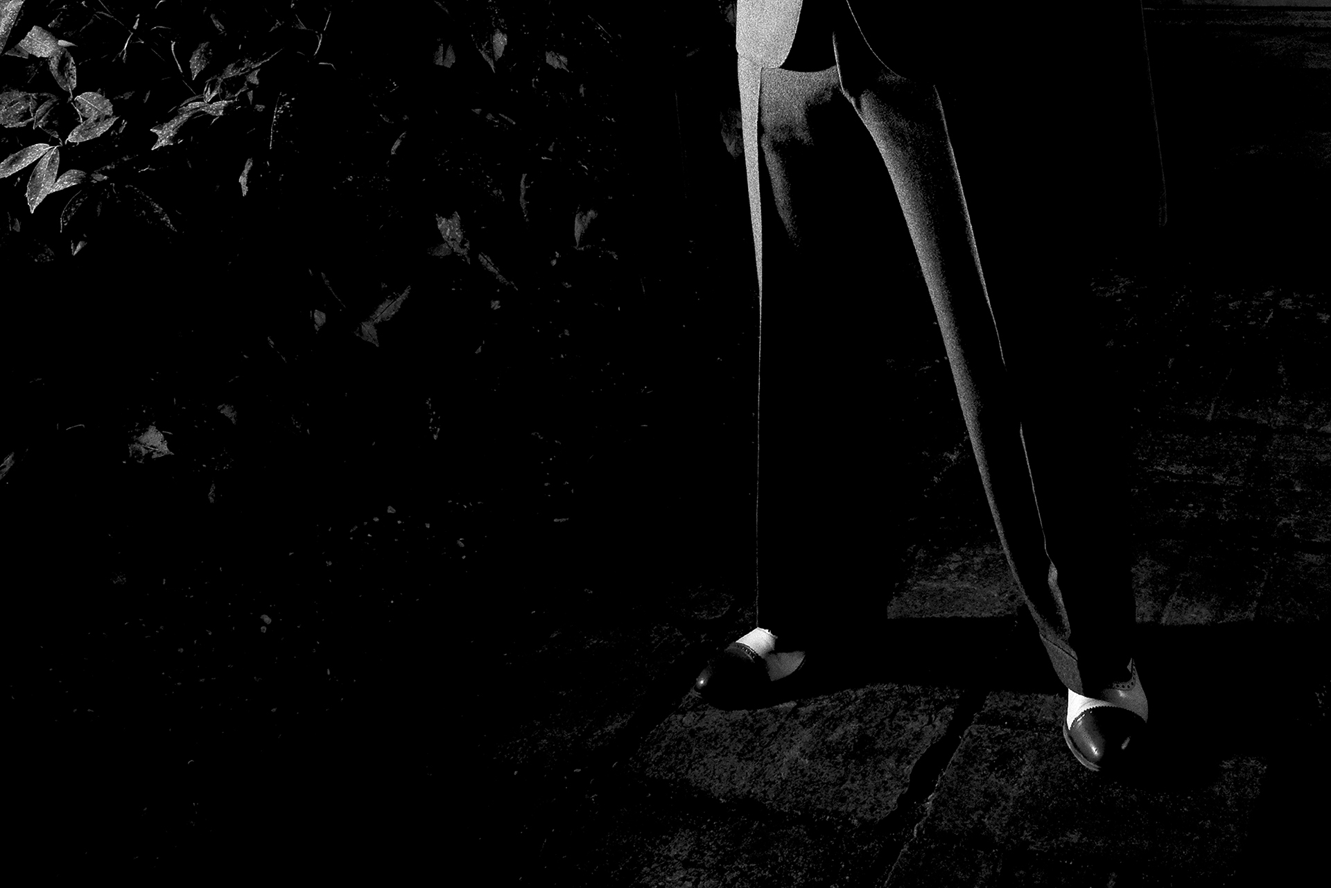 Out of the Moonlight | film noir | Robert van der Ree Photography